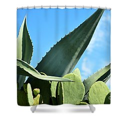 Shower Curtain featuring the photograph Prickly Pear Cactus And Century Plant by Ray Shrewsberry