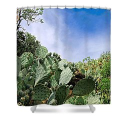 Prickly Pear Hillside Shower Curtain by Gina Savage