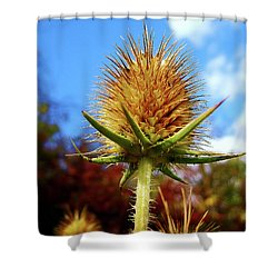 Shower Curtain featuring the photograph Prickly Thistle by Nina Ficur Feenan
