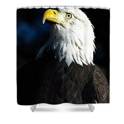 Pride And Power Shower Curtain