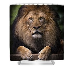 Shower Curtain featuring the photograph Pride by Cheri McEachin