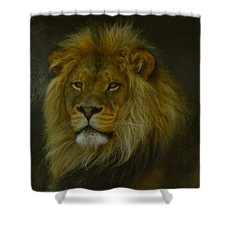 Pride Land Shower Curtain