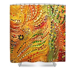 Primitive Abstract 3 By Rafi Talby Shower Curtain by Rafi Talby