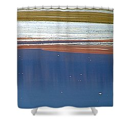 Primordial Soup Shower Curtain by Bob Wall
