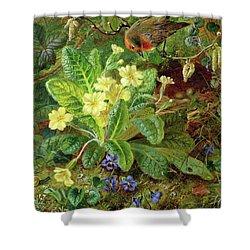 Primrose And Robin Shower Curtain by William John Wainwright