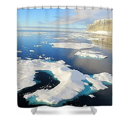 Prince Leopold Island Shower Curtain