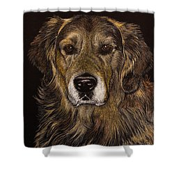 Prince Of Champions Shower Curtain
