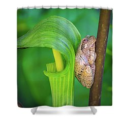 Prince Of The Pulpit Shower Curtain