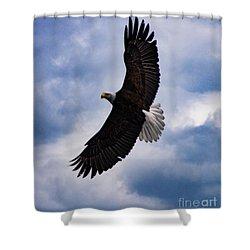 Prince Rupert Soaring Eagle Shower Curtain