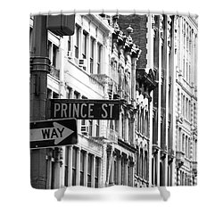 Prince Street Shower Curtain