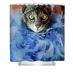 Princess Cat Shower Curtain
