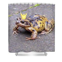 Princess Frog Shower Curtain