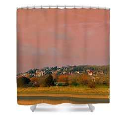 Princess Parade 2015 Shower Curtain