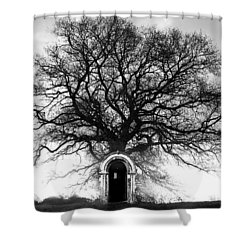 Principium Shower Curtain