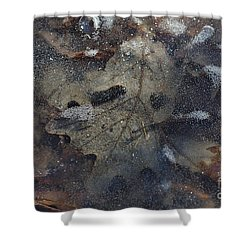 Shower Curtain featuring the photograph Prisoner Of The Ice by Cendrine Marrouat