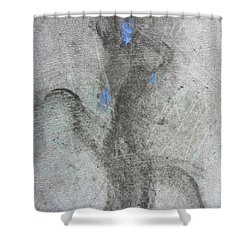 Private Dancer Two Shower Curtain