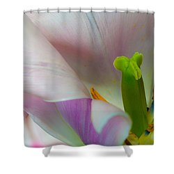 Private Showing Shower Curtain