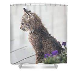 Profile In Kitten Shower Curtain