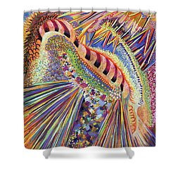 Propulsion Shower Curtain