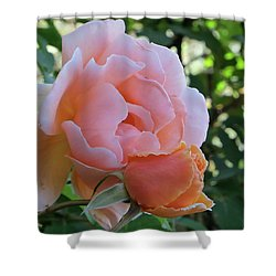 Protective Rose Shower Curtain