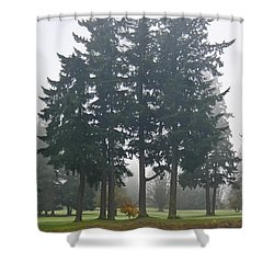 Protectors Shower Curtain