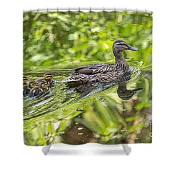Shower Curtain featuring the photograph Proud Mama by Kate Brown