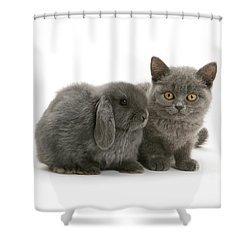 Proud Of My Grey Hare Shower Curtain