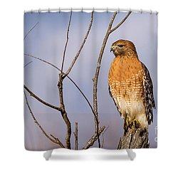 Proud Profile Shower Curtain