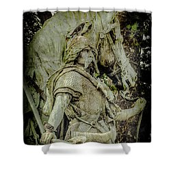 Paris, France - Proud Warrior And The Pigeon Shower Curtain