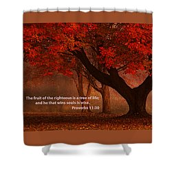 Shower Curtain featuring the photograph Proverbs 11 30 Scripture And Picture by Ken Smith