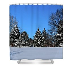 Provincial Pines Shower Curtain