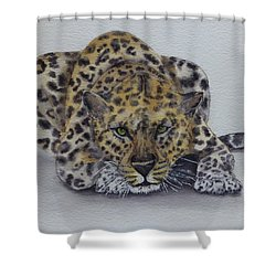 Prowling Leopard Shower Curtain by Kelly Mills