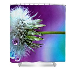 Psychedelic Daydream Shower Curtain