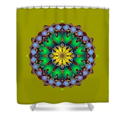 Psychedelic Mandala 003 A Shower Curtain by Larry Capra