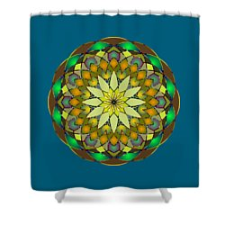Psychedelic Mandala 008 A Shower Curtain