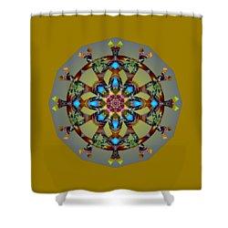 Psychedelic Mandala 010 B Shower Curtain by Larry Capra