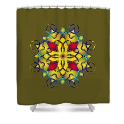 Psychedelic Mandala 011 B Shower Curtain