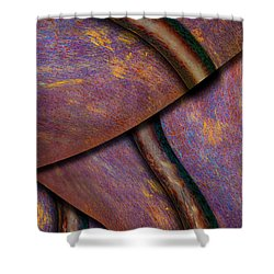 Psychedelic Pi Shower Curtain by Paul Wear