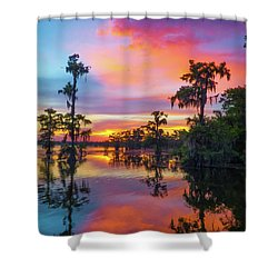 Psychedelic Swamp Shower Curtain by Kimo Fernandez
