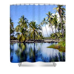 Pu Uhonua O Honaunau Pond Shower Curtain by Kurt Van Wagner