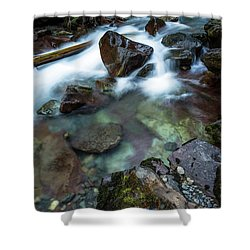 Puddle By The Creek Shower Curtain