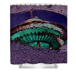 Puddle Needle Shower Curtain by Tim Allen