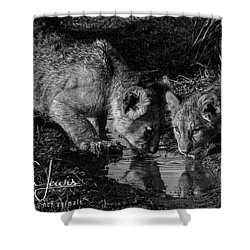 Shower Curtain featuring the photograph Puddle Time by Karen Lewis