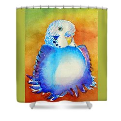 Shower Curtain featuring the painting Pudgy Budgie by Patricia Piffath