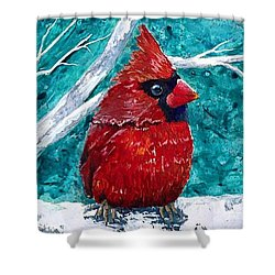 Pudgy Cardinal Shower Curtain