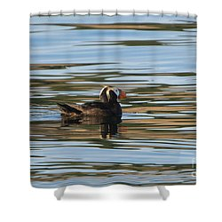 Puffin Reflected Shower Curtain by Mike Dawson