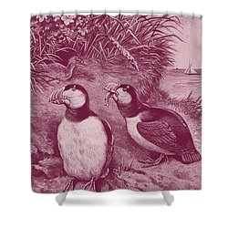 Puffins At Home Shower Curtain