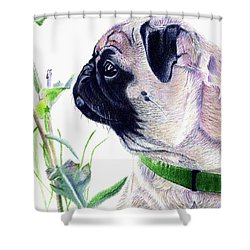 Pug And Nature Shower Curtain by Patricia Barmatz