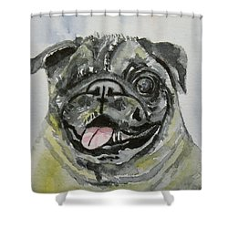 One Eyed Pug Portrait Shower Curtain