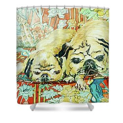 Pugs On A Chinese Print Sofa Shower Curtain by Joan Thewsey